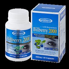 Bilberry 500mg 60caps