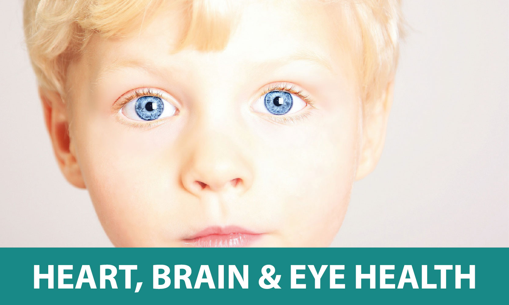 Heart-Brain-Eye-Health